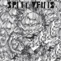 SPLIT VEINS - S/T LP