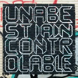 UNA BÈSTIA INCONTROLABLE - Metamorfosi LP BLACK VINYL