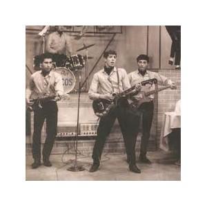 LOS SAICOS - Demolicion LP