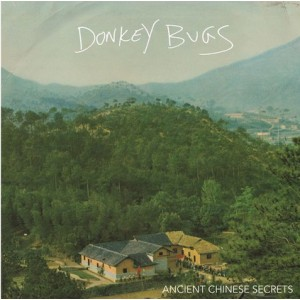 DONKEY BUGS - Ancient Chinese Secrets LP
